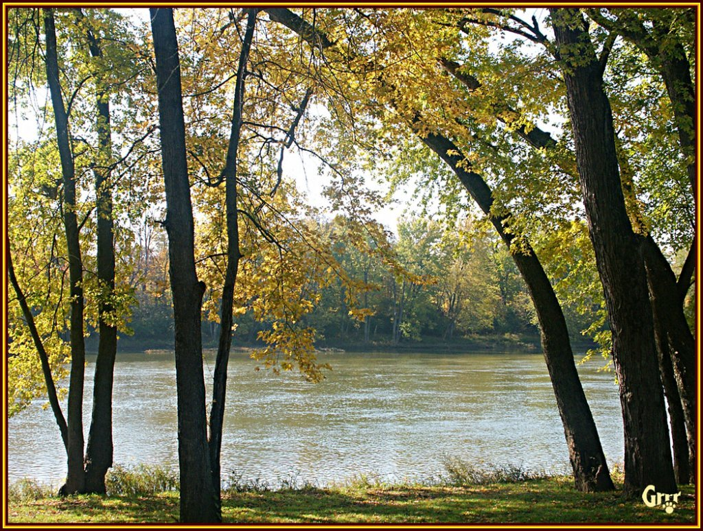 Fall View of the EEL River