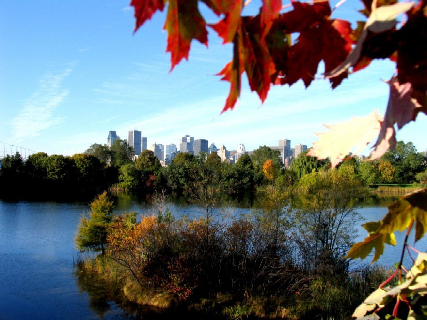 Montreal Canada by morin3000
