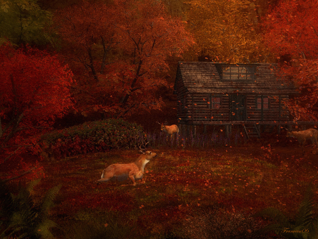 Autumn Colors by madame