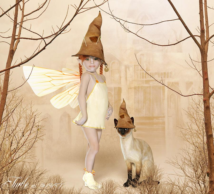 ~The Fae and Cat Wear the Hatz~