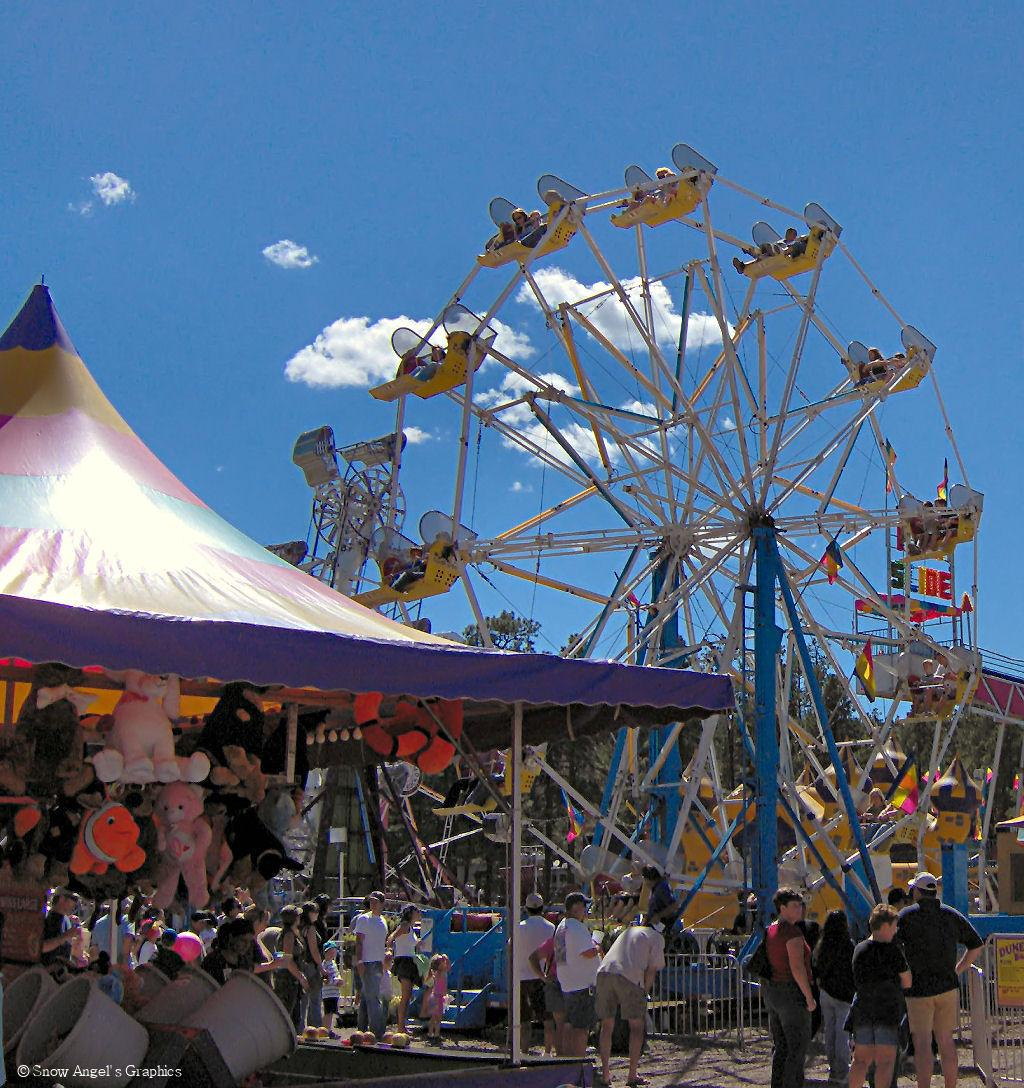Mountain County Fair