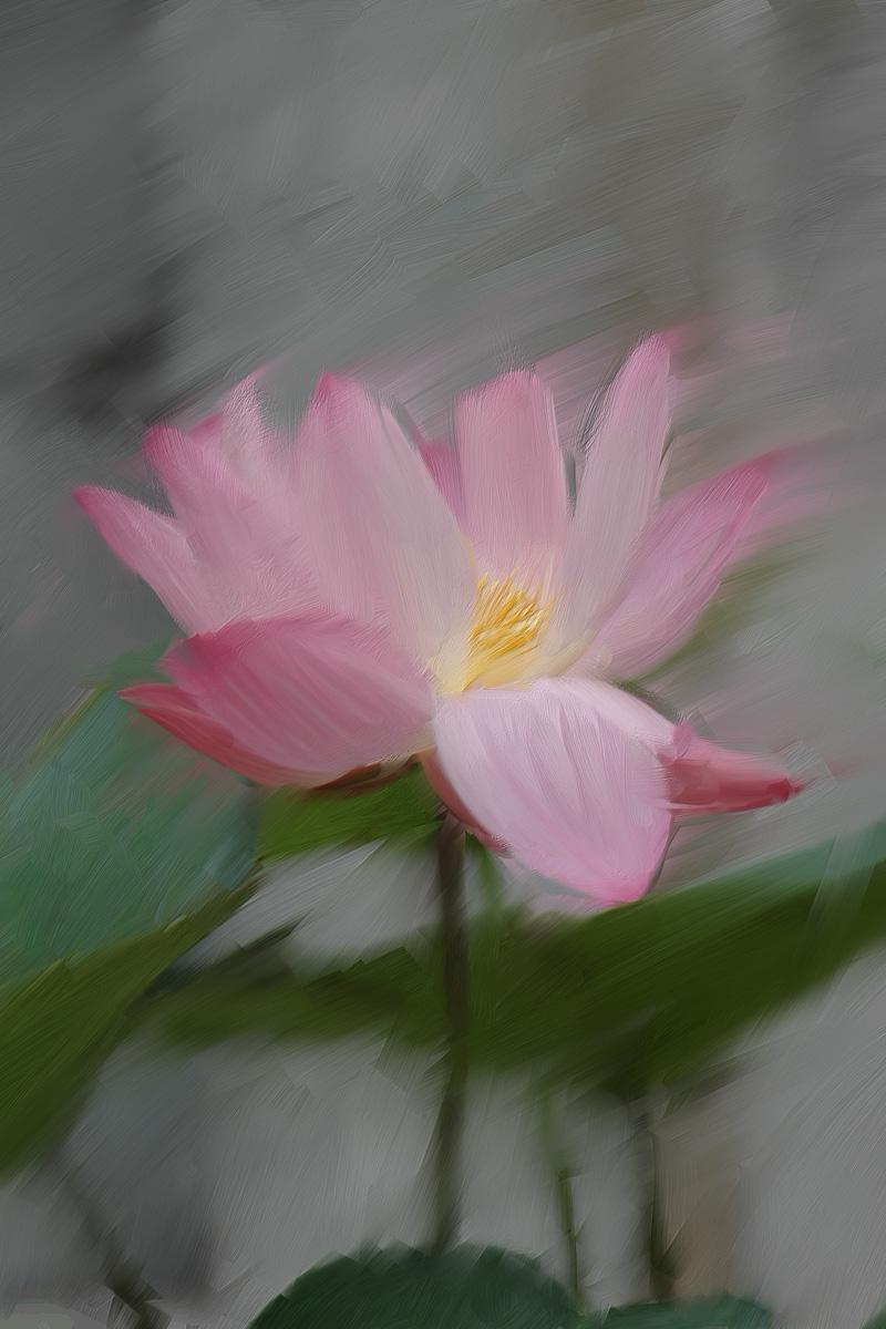 flower painting by lemonjim
