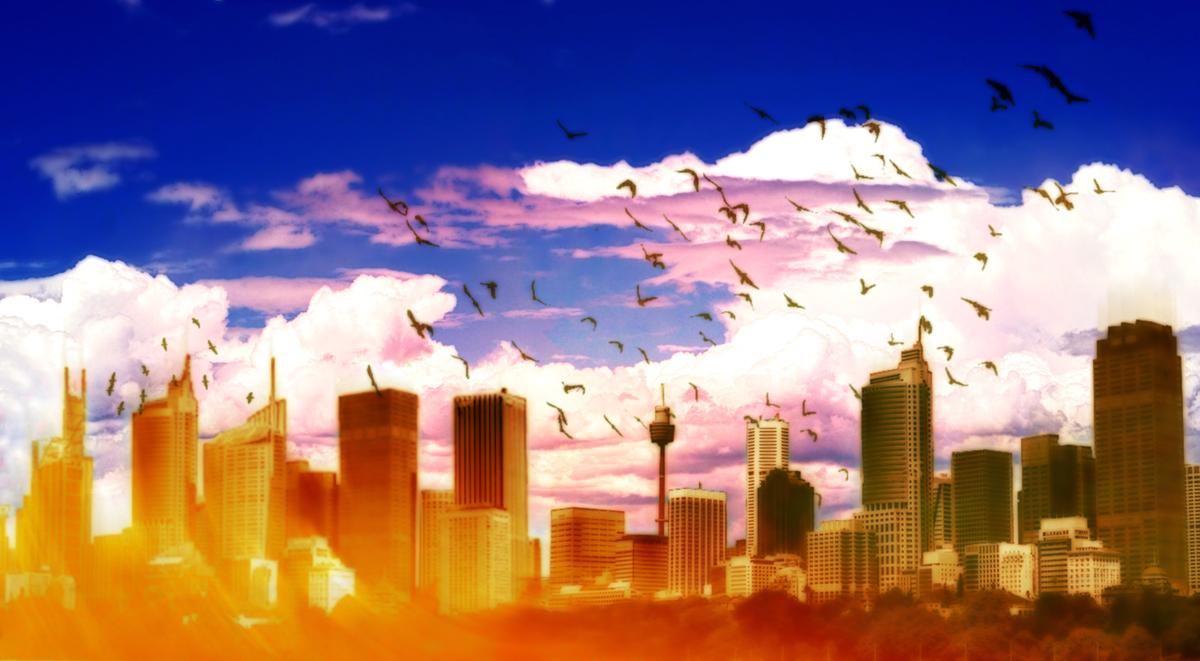 Cityscape by Wasgo