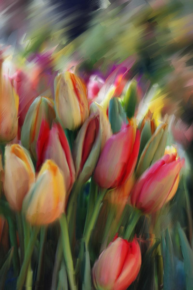 exuberantulips by lemonjim