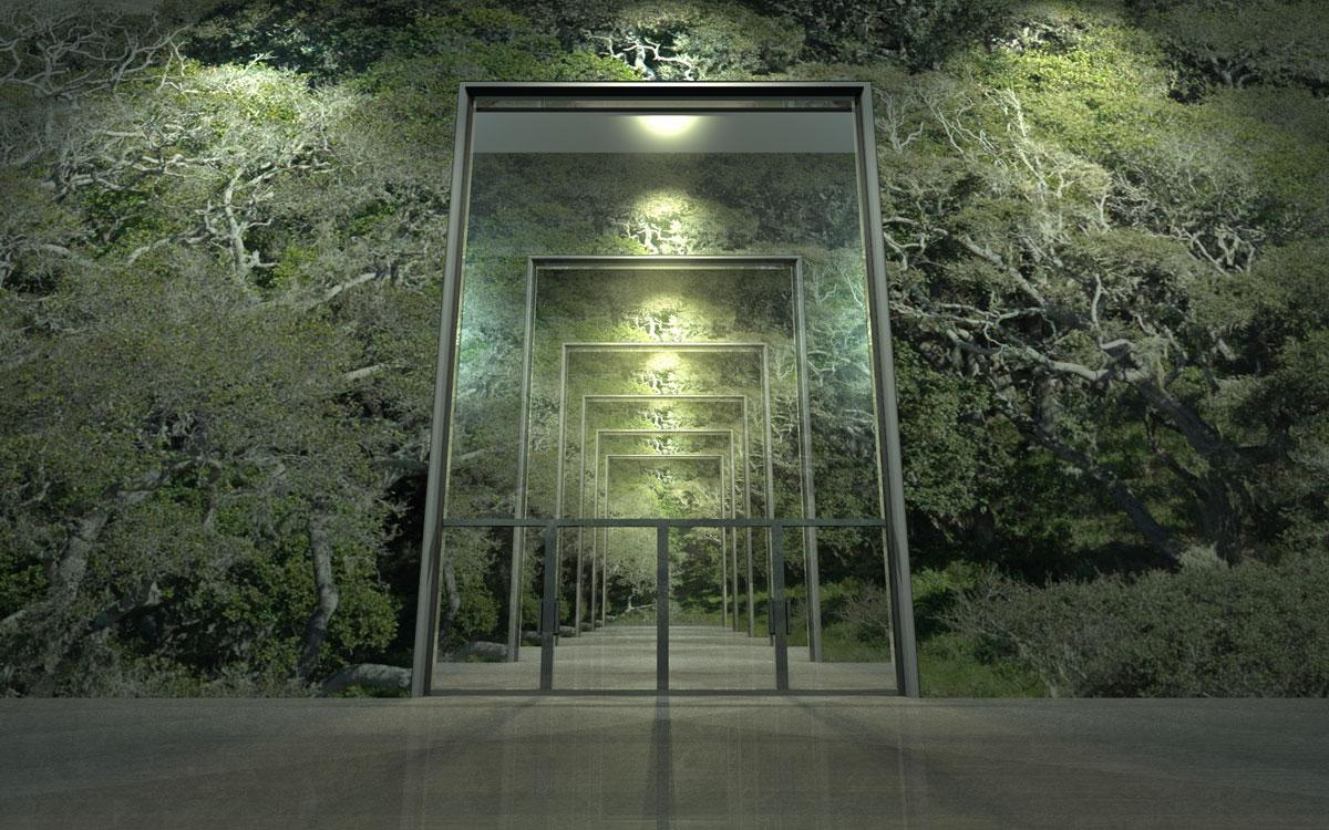 forest gallery