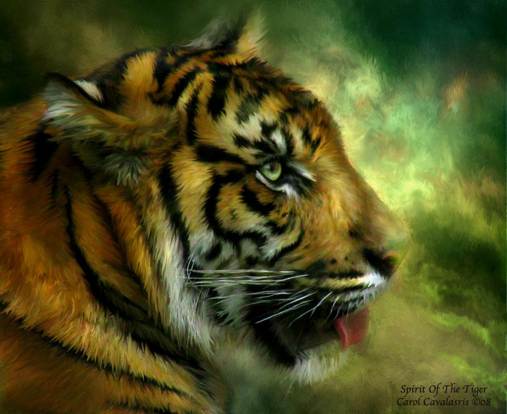 Spirit Of The Tiger by romanceworks