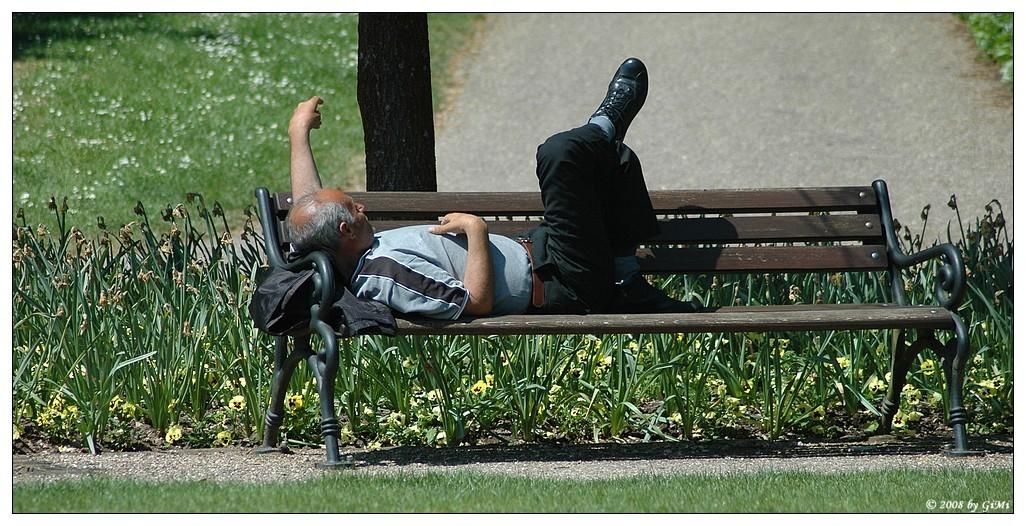Siesta on the bench by GiMi53