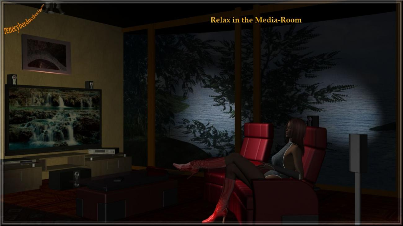 Relax in the Media-Room