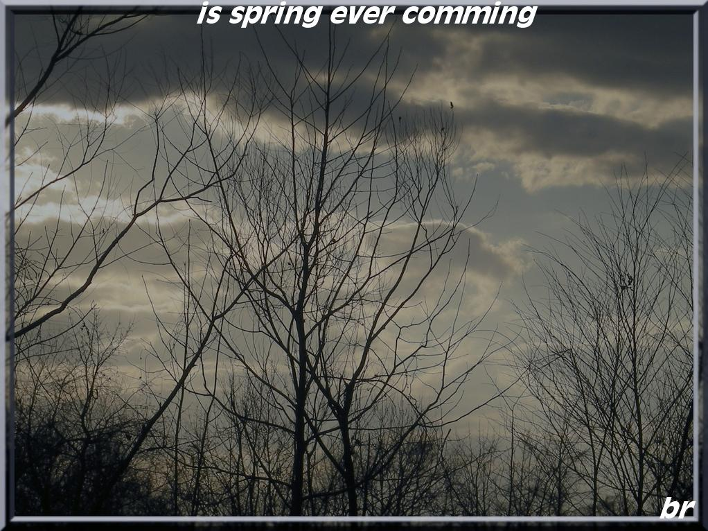 is spring ever comming by brathburn