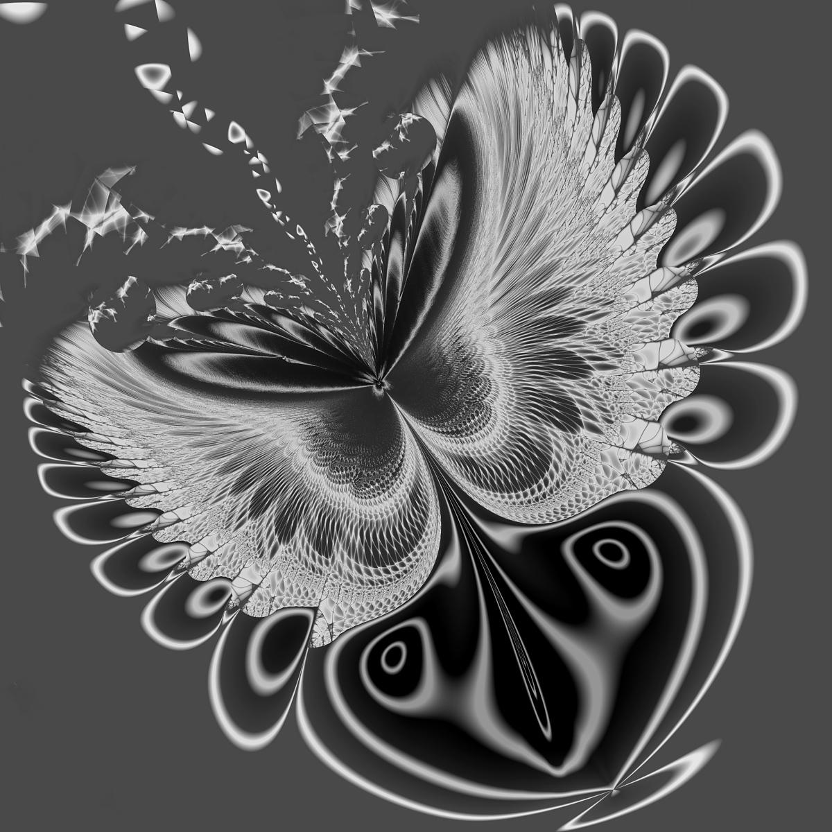 Butterfly by Titia