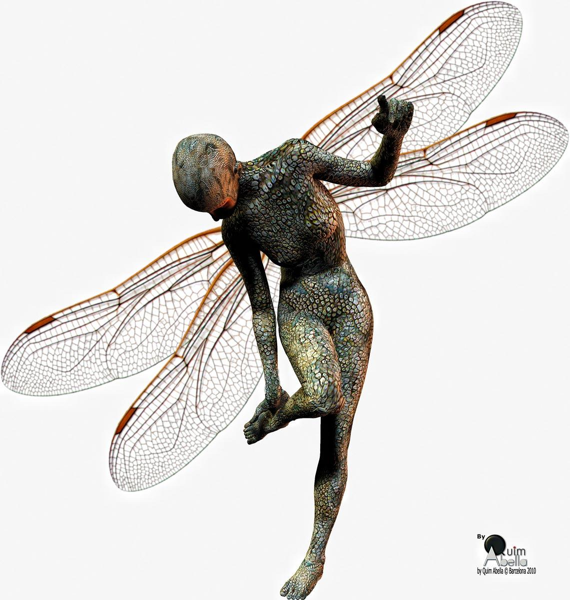 Wings of dragonfly  by quim2001