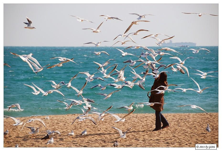 the lady with the gulls by GiMi53