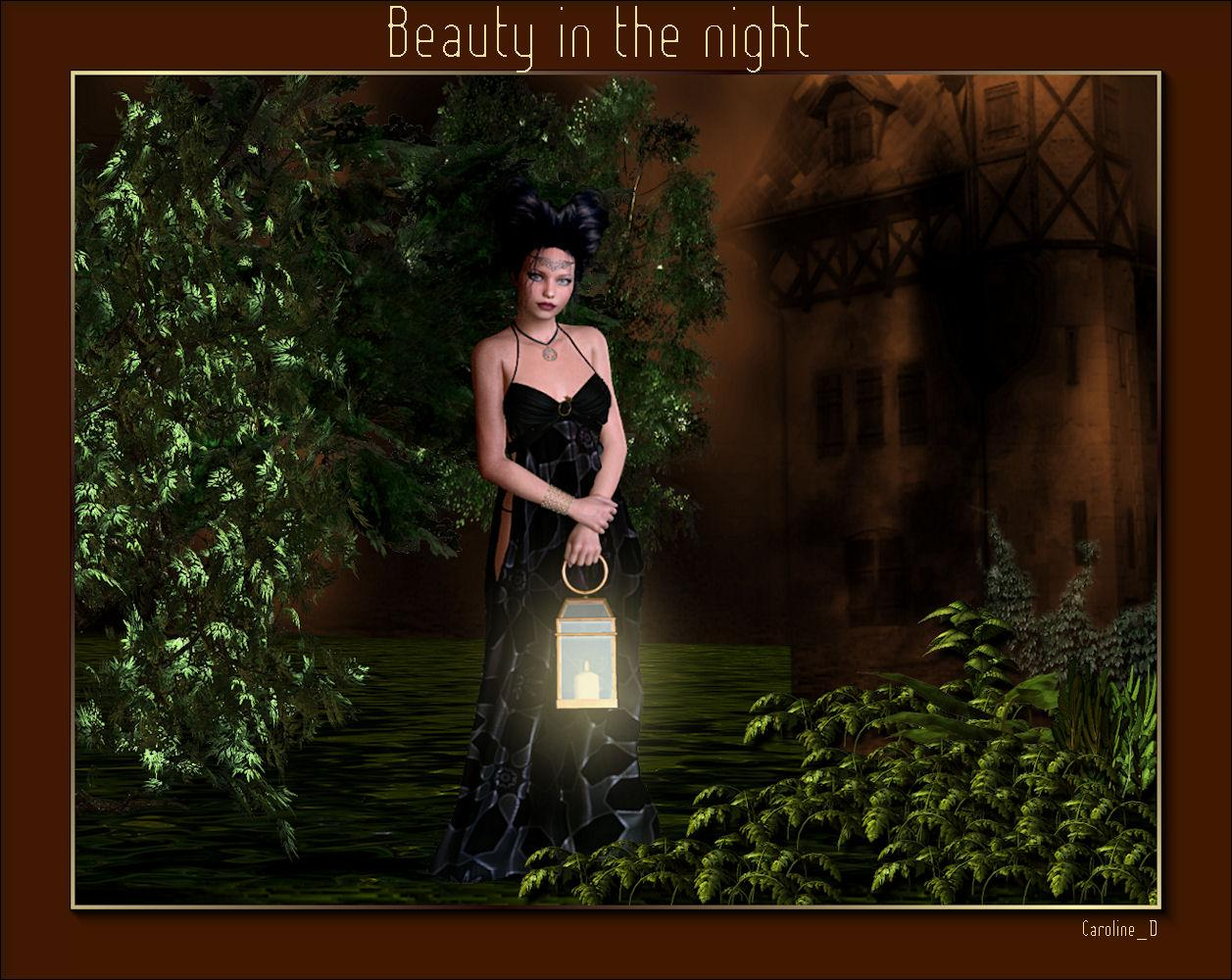 Beauty in the night