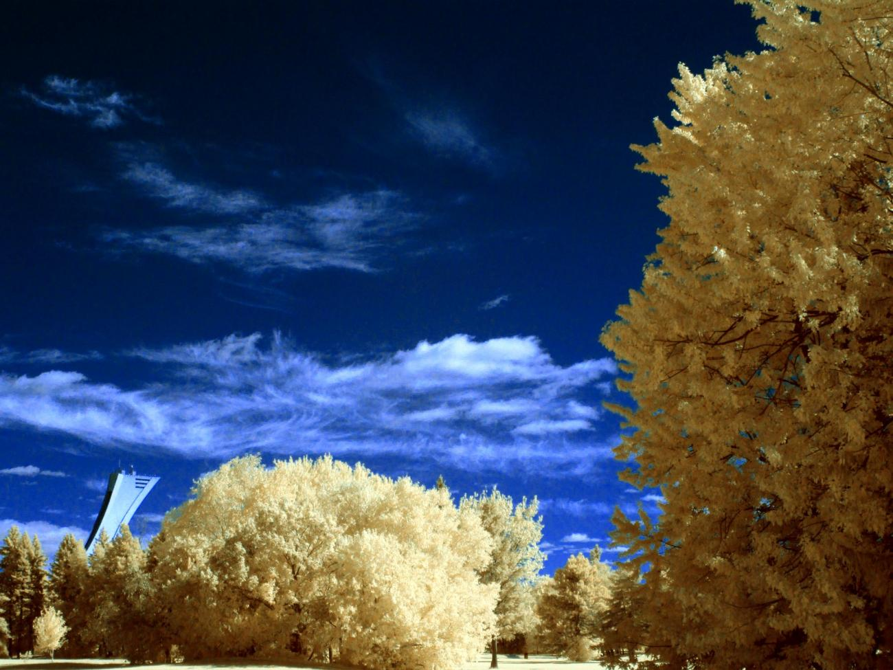IR, an other try... by Luc2