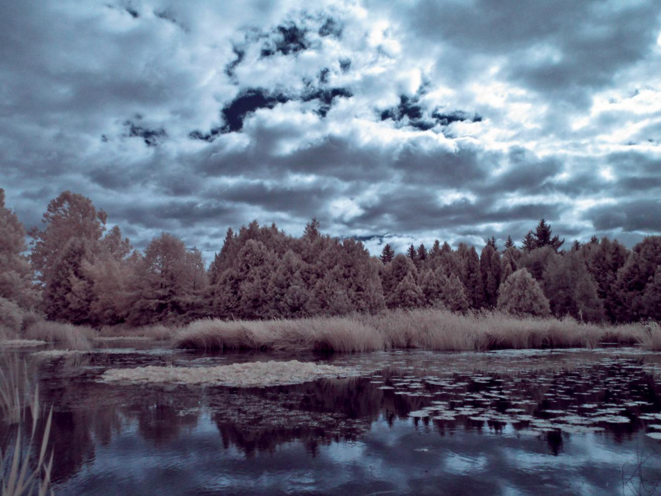 The Pond IR by Luc2