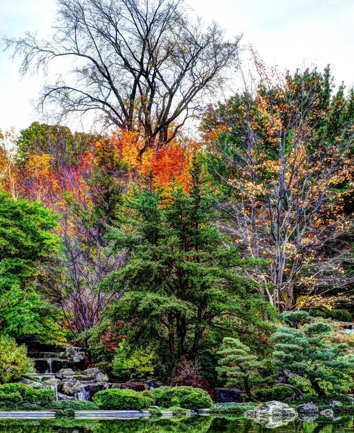 Autumn on the Japanese Garden by Luc2