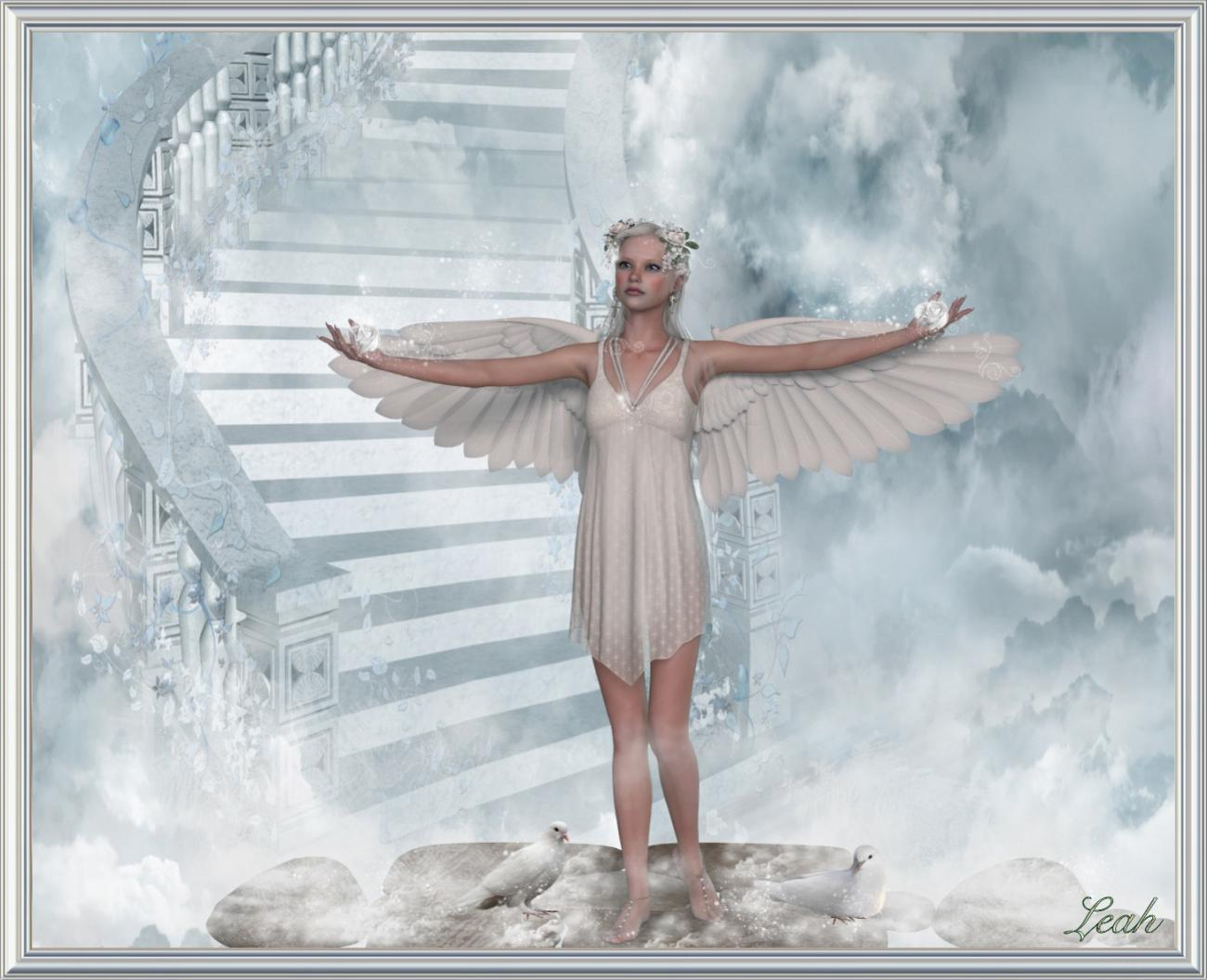 A Angel for Don