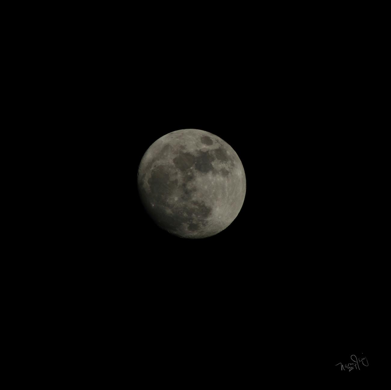 My First Moon Shot by lunchlady