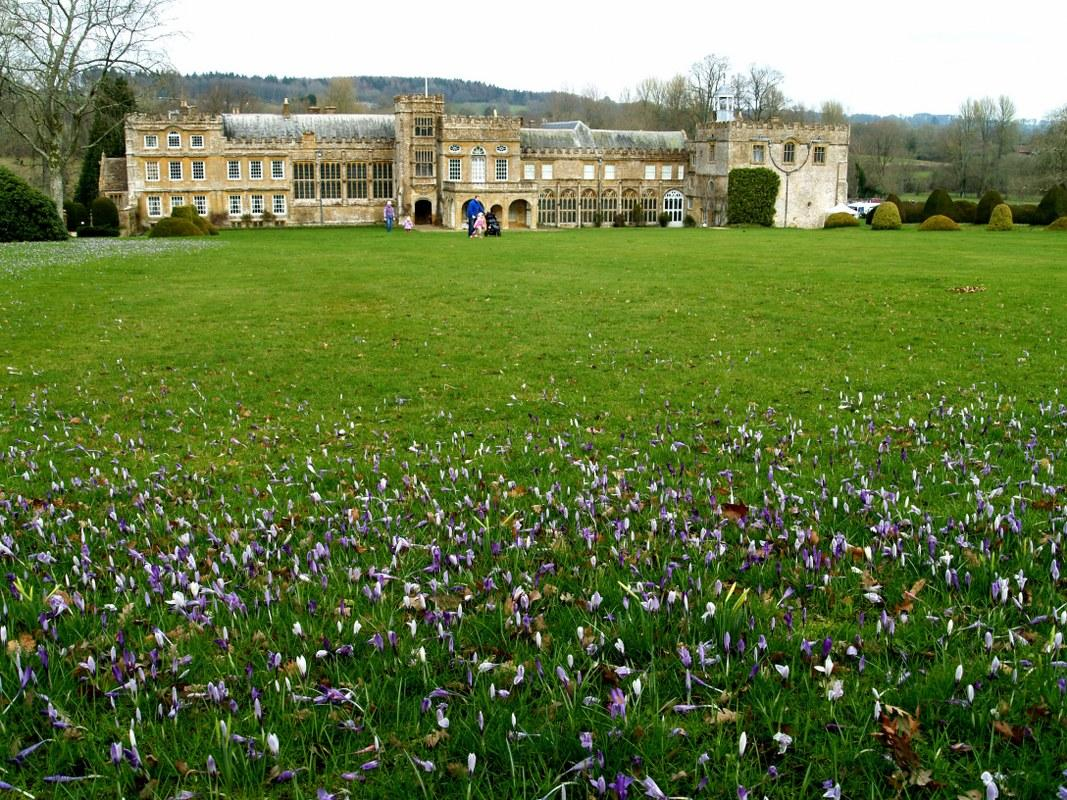 Croci and Forde Abbey.