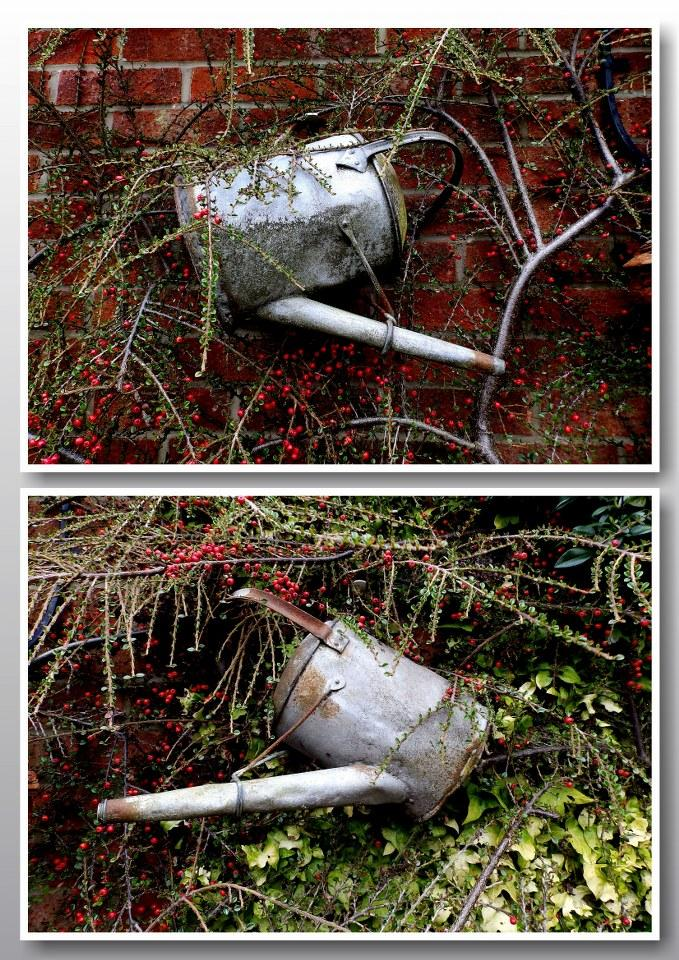 Watering cans. by jayfar