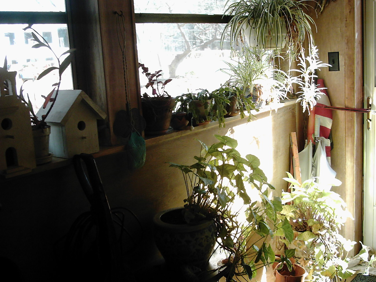 ** another plant room *