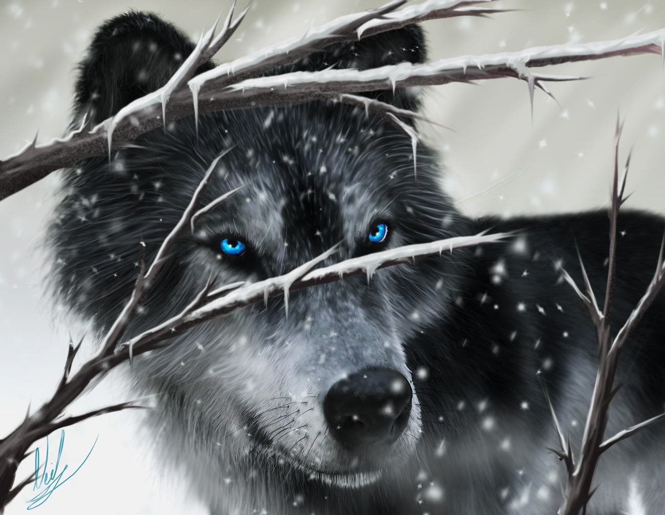 The wolf in the snow... by kirisute