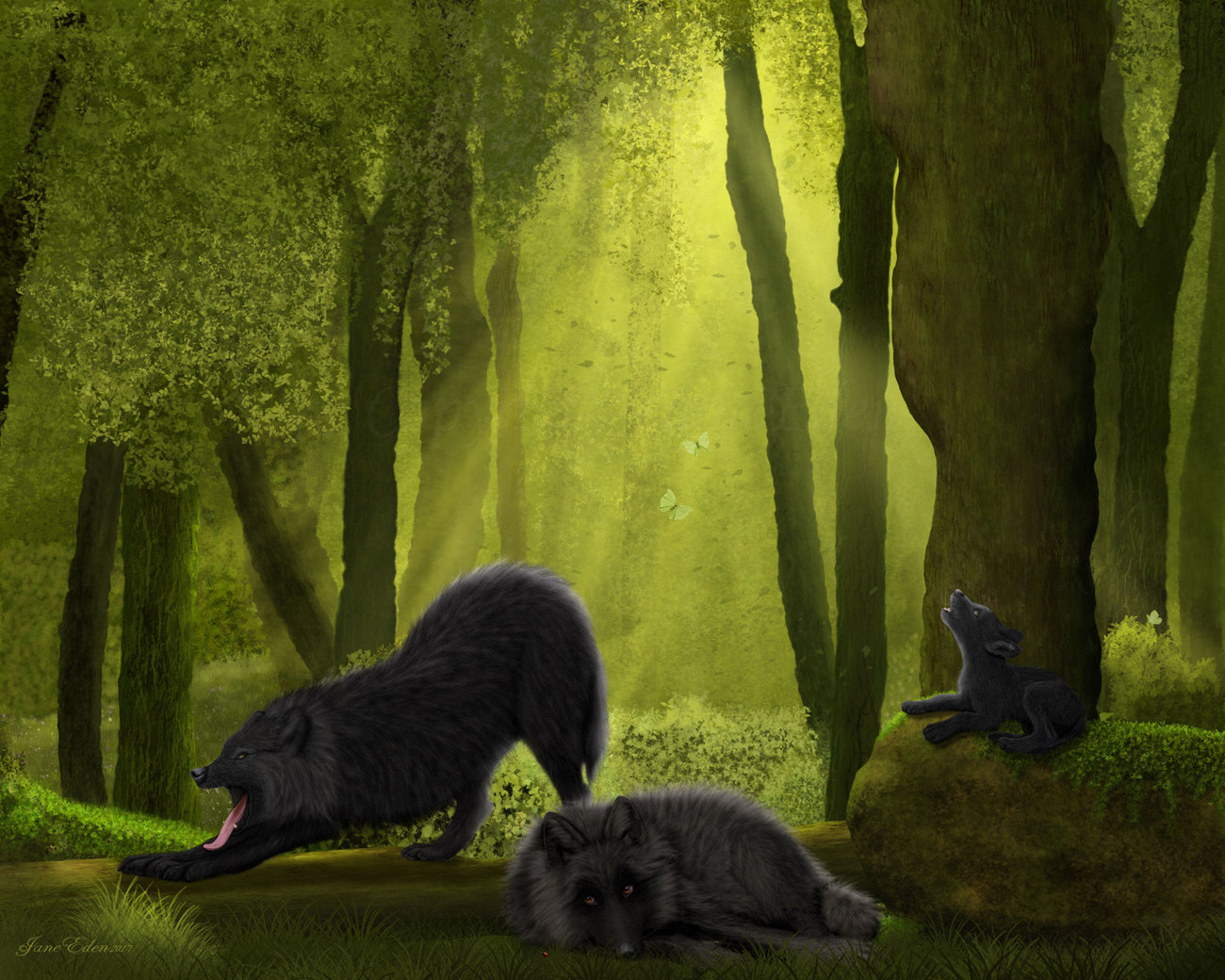 Black Wolves in the Woodland