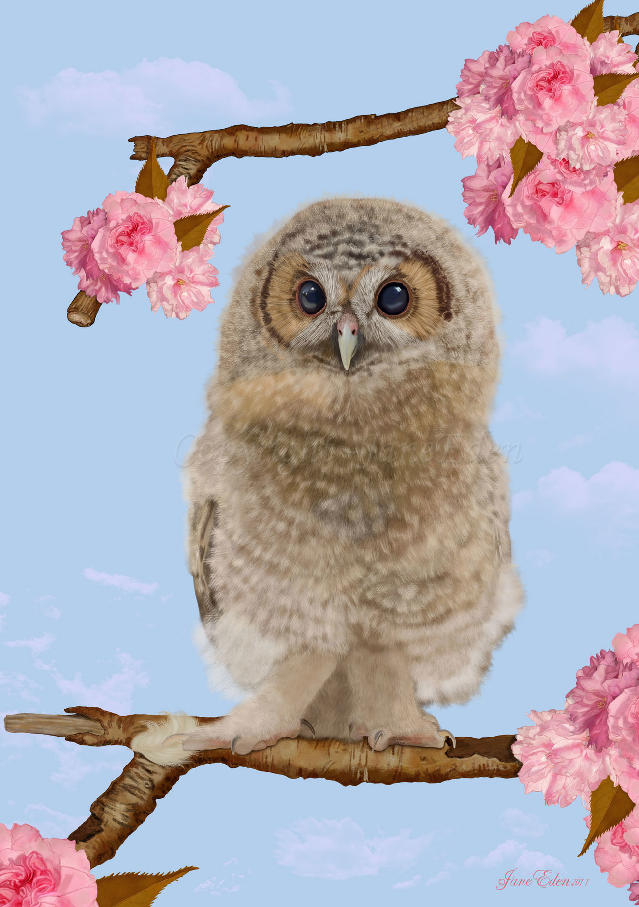 Baby Owlet in a Blossom Tree by JaneEden