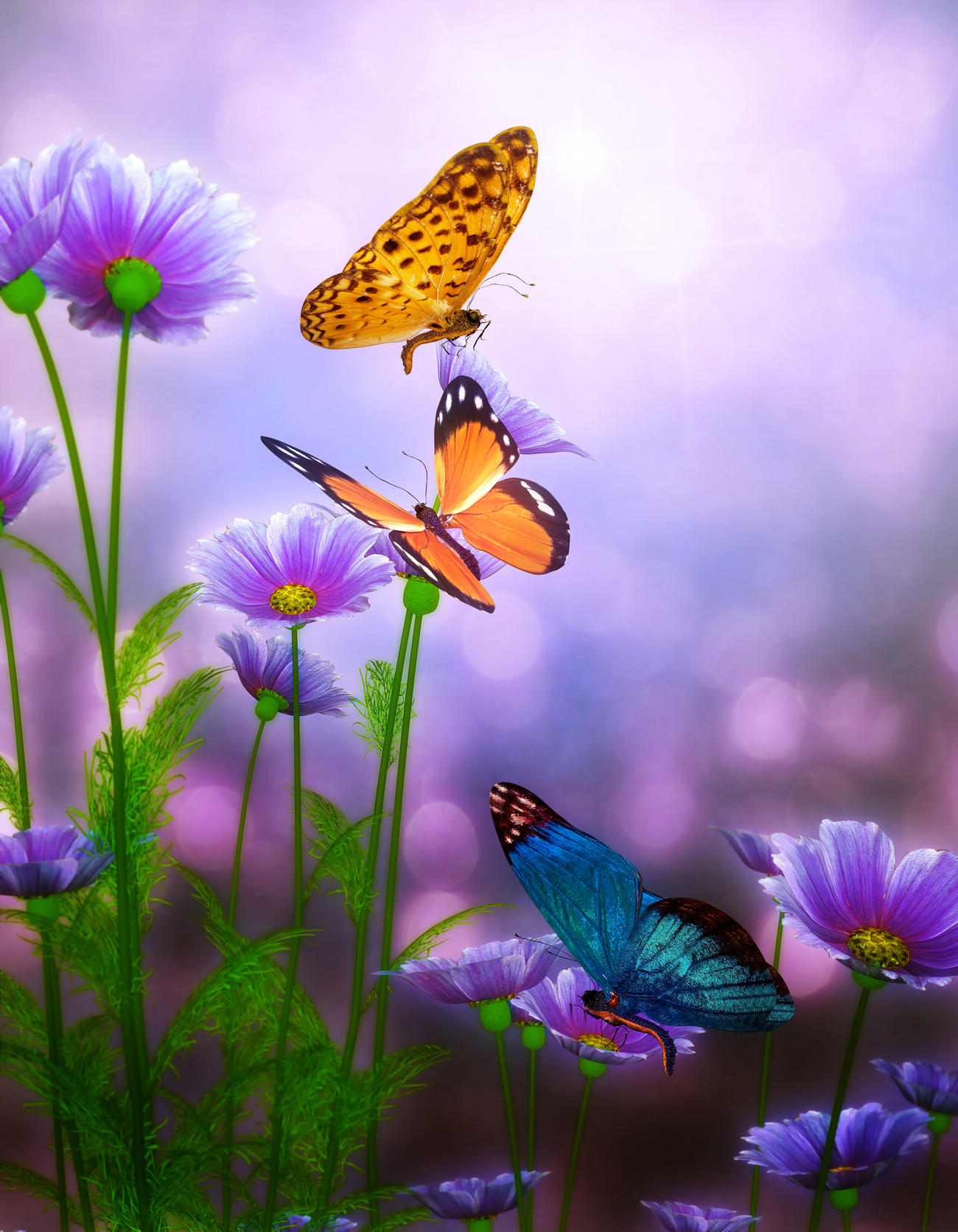 Butterflies by Calico