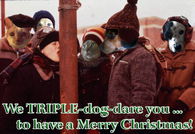 2014 Chistmas Card by SchelleFire