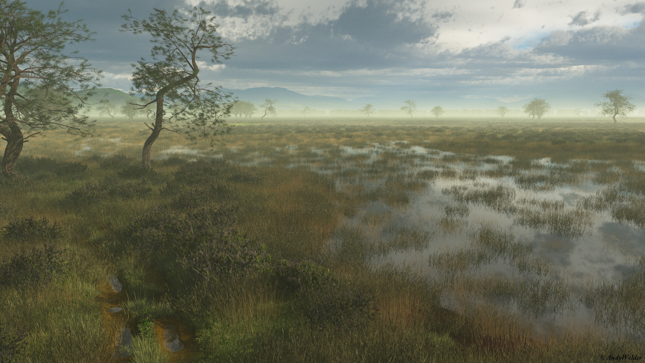 The marshes by AndyWelder