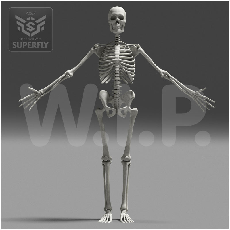 Skeleton WIP no.1 by caisson