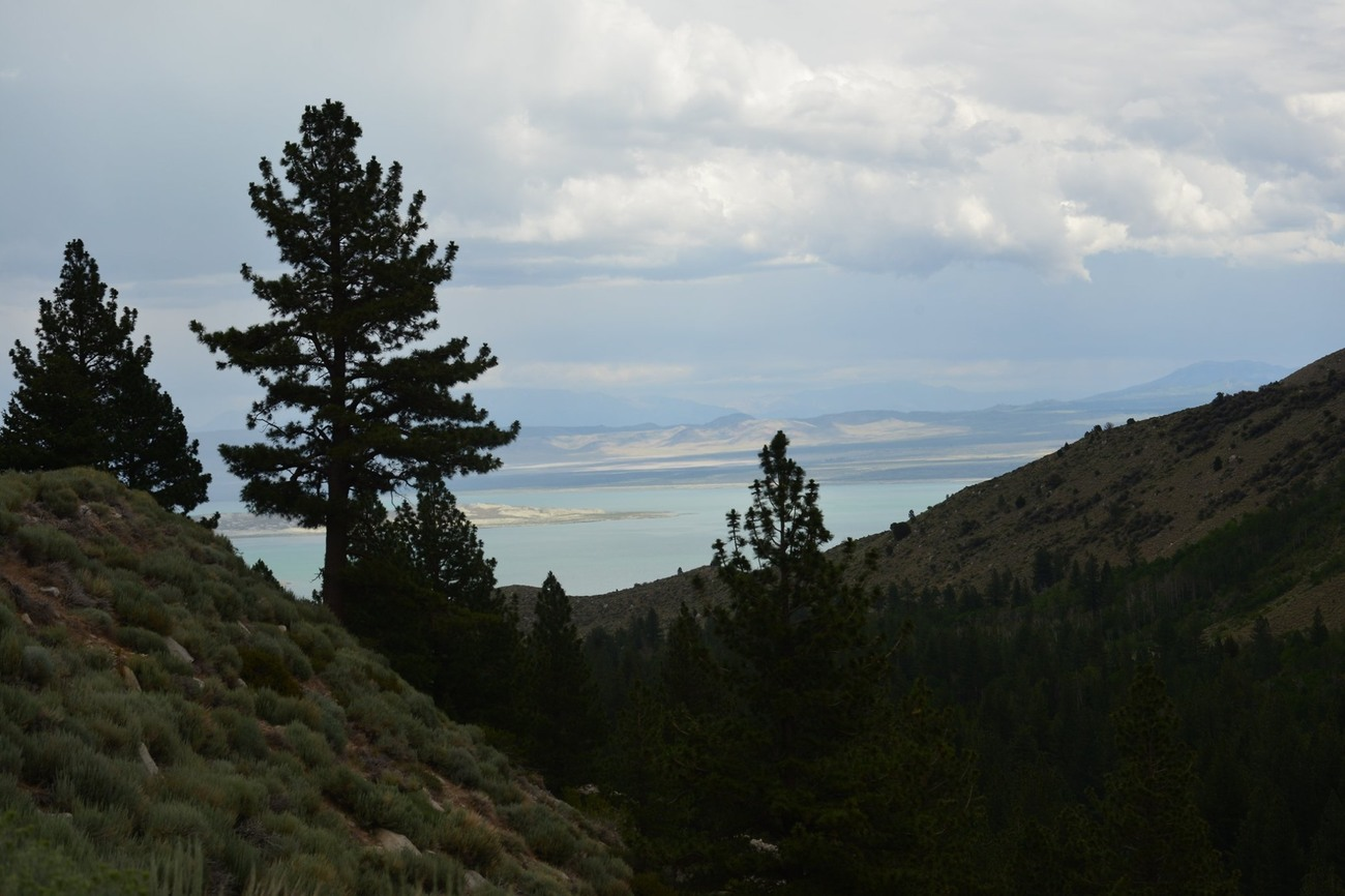 upon side of mountain looking at Mono Lake by jocko500