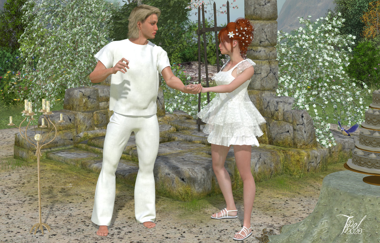 Valentines day_The wedding by Tipol