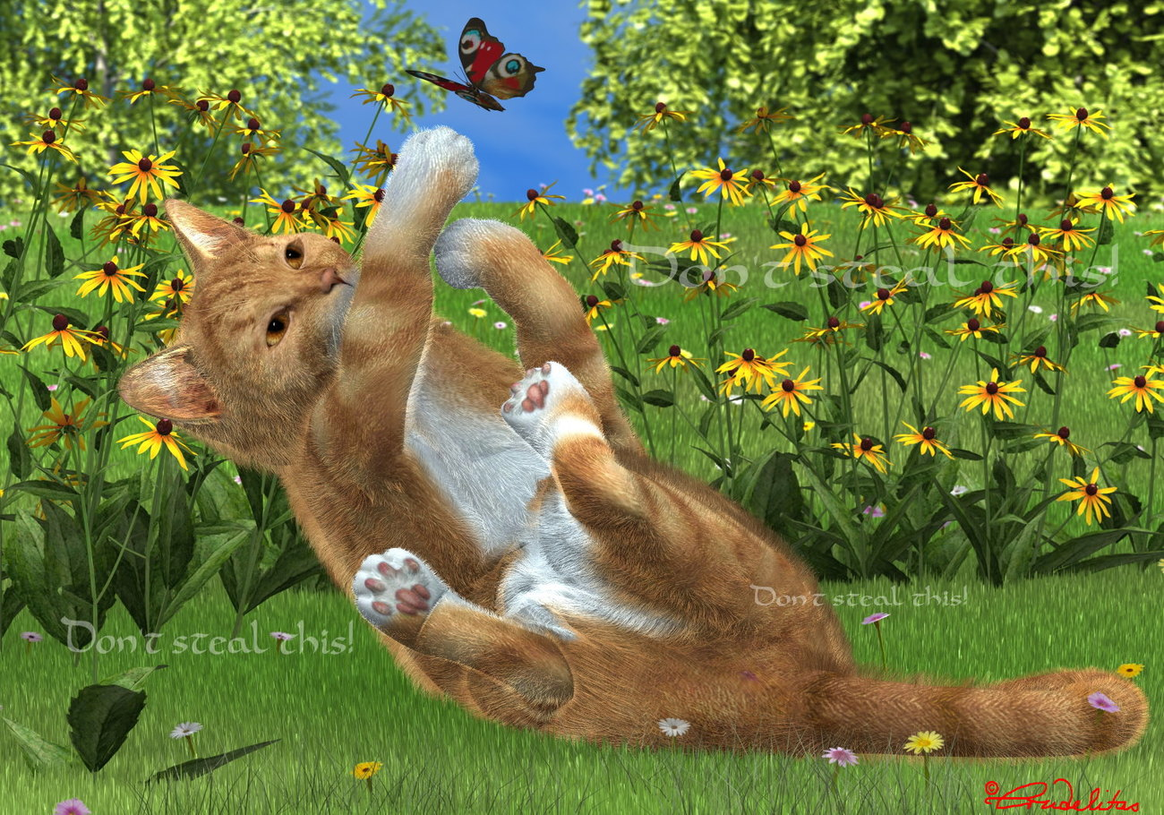 Cat on the Meadow by Crudelitas