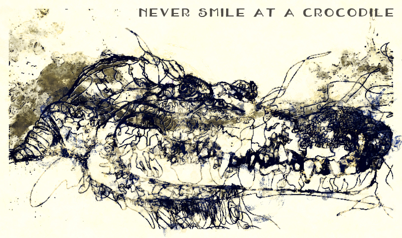 Never smile at a crocodile by dayna2