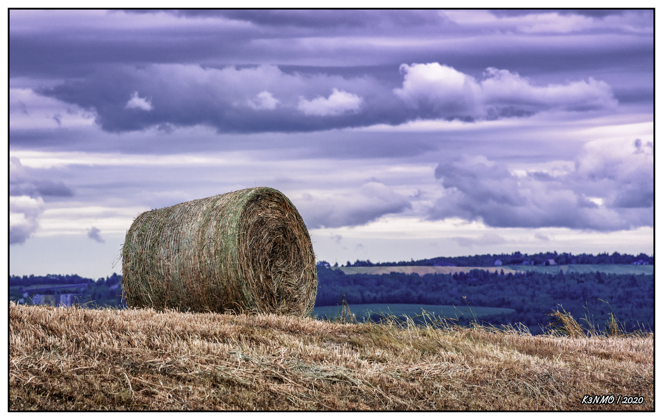 Bale of Hay in Annapolis Valley by kenmo