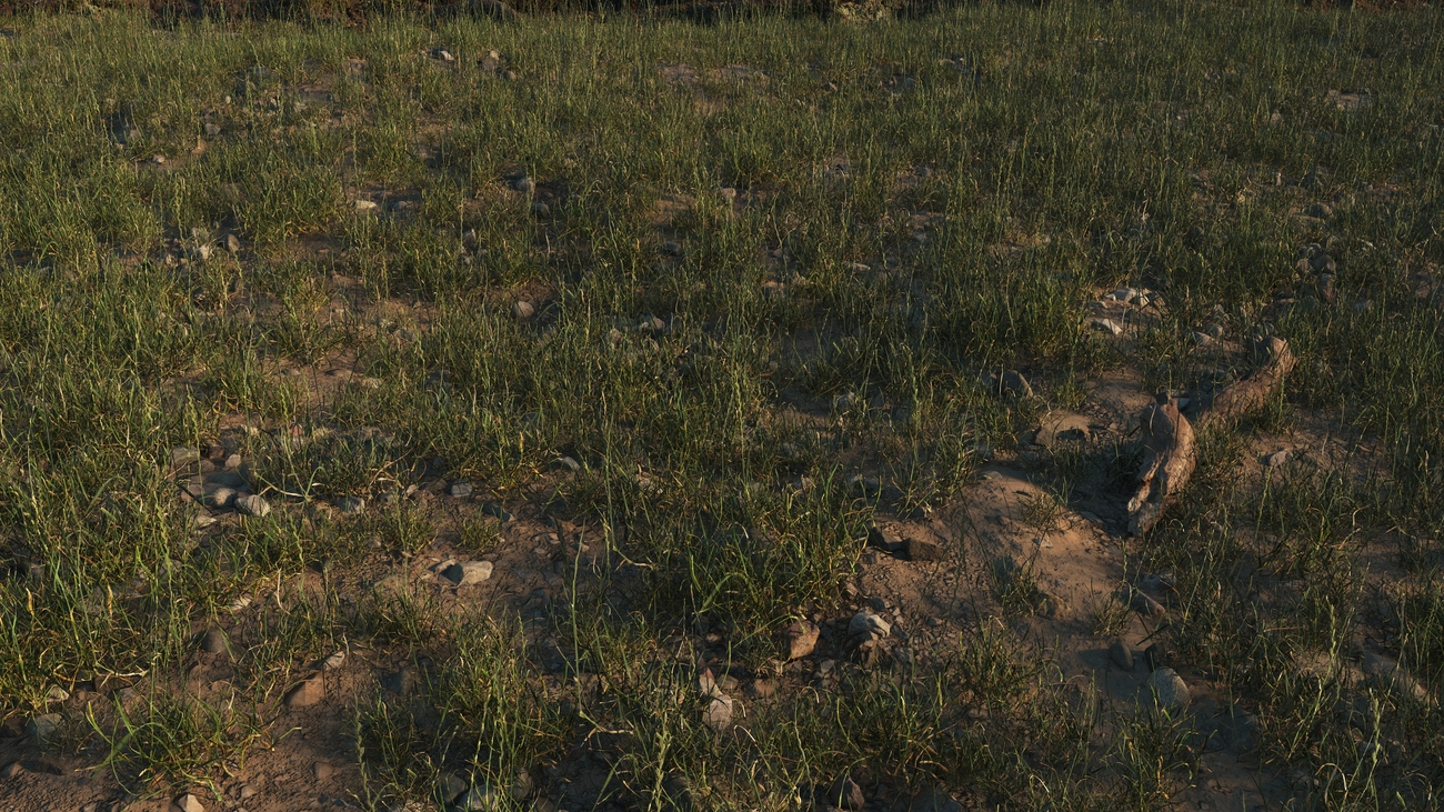 Stony ground with grass by iborg64