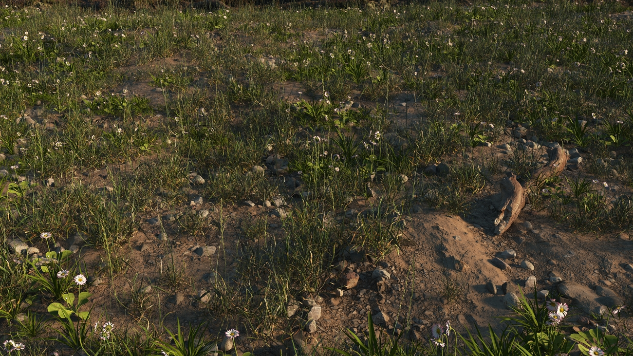 stony ground with grass 2nd version by iborg64