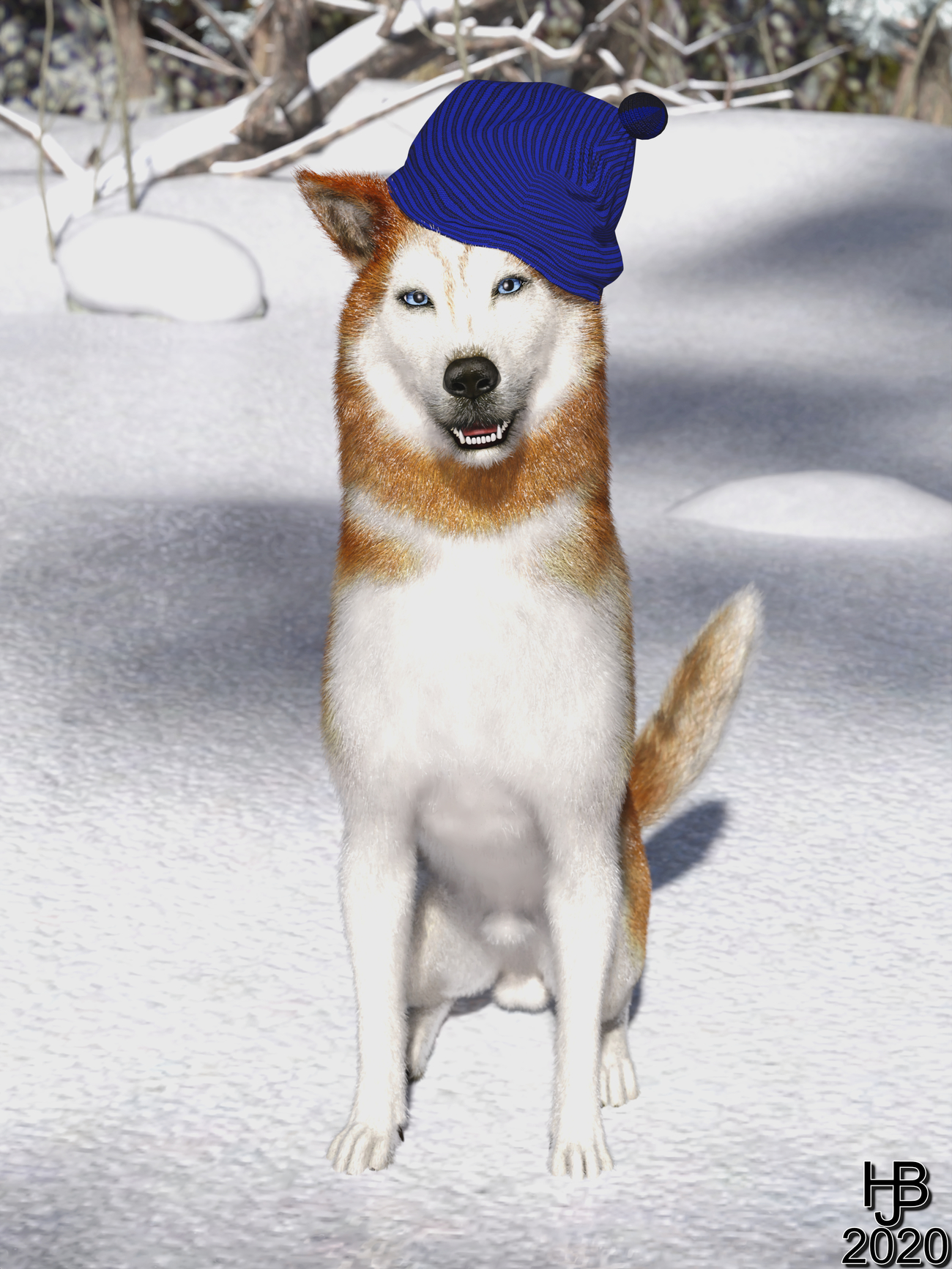 Husky with cap by Hajoba