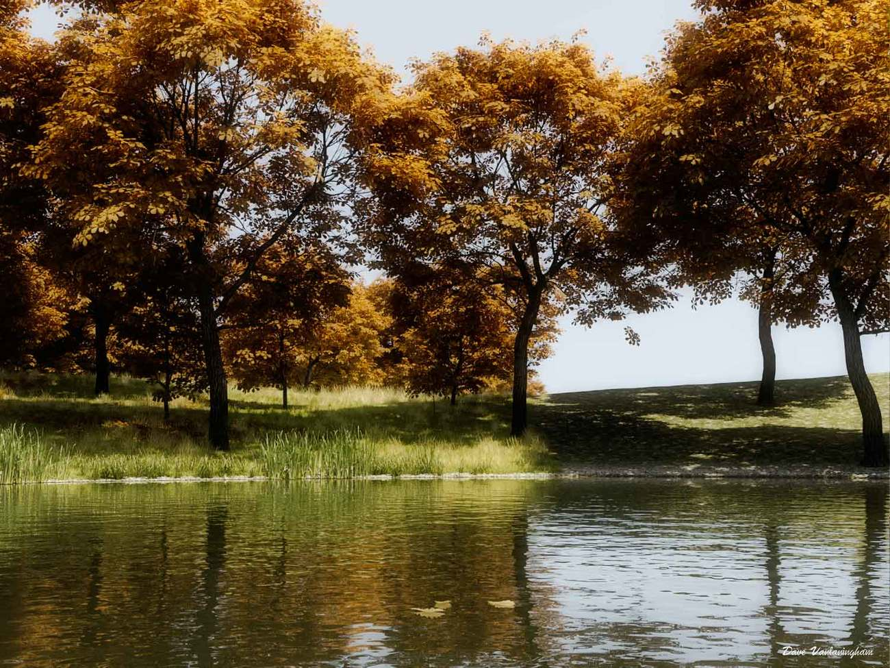 Leaves on the water by vlgraphics