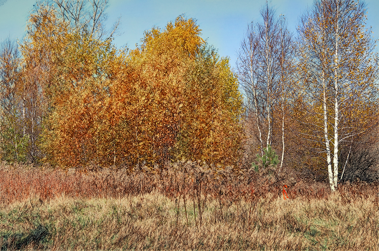 Automne f by martial
