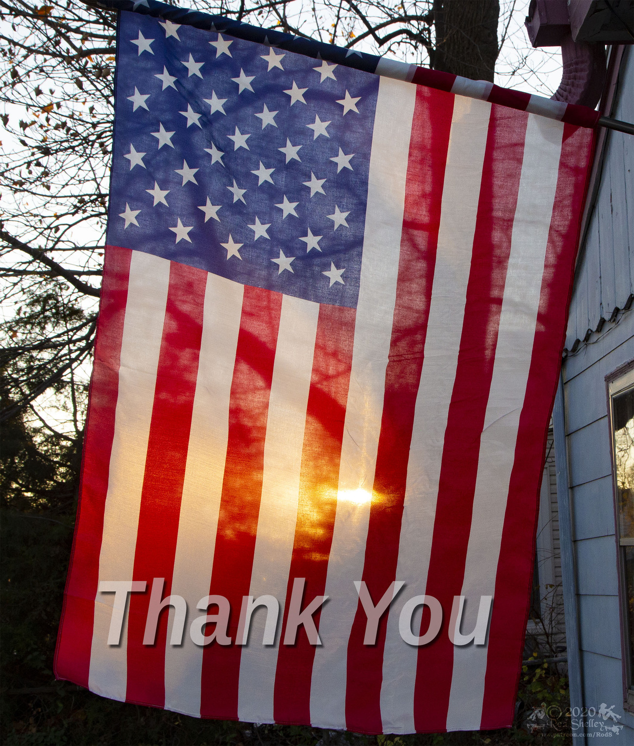 Thank You - Veteran's Day 2020 by RodS