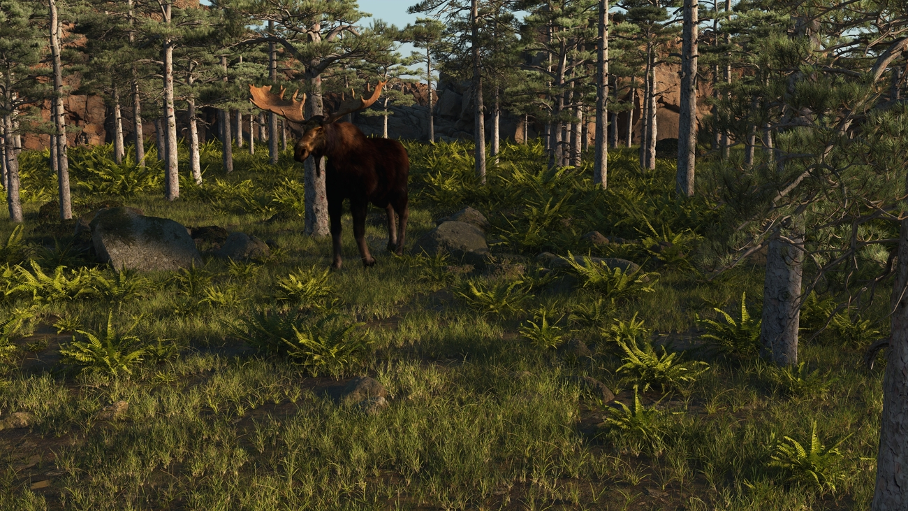 Male moose by iborg64