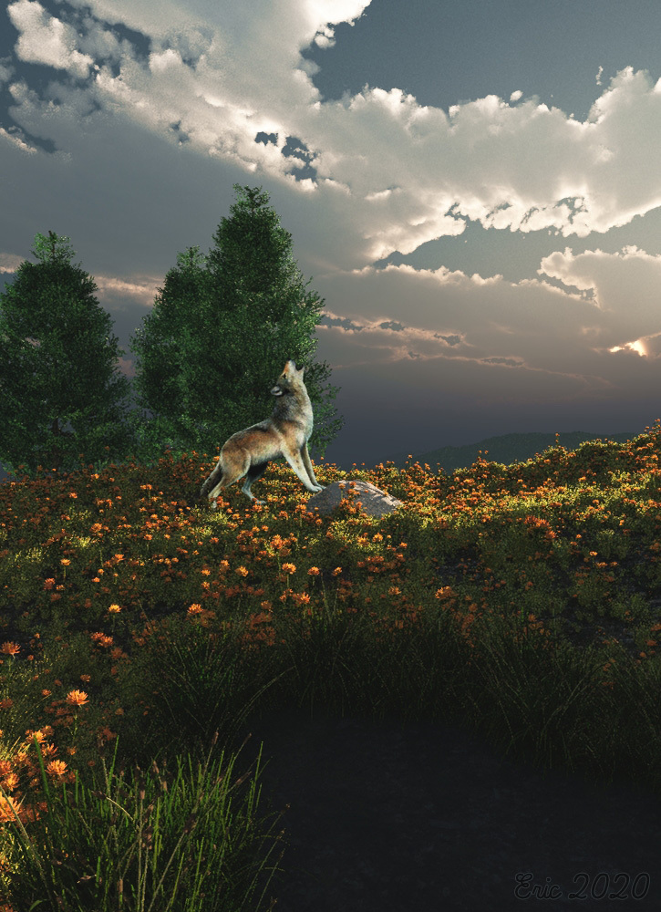 The wolf's bark in the evening. by Ourias3D