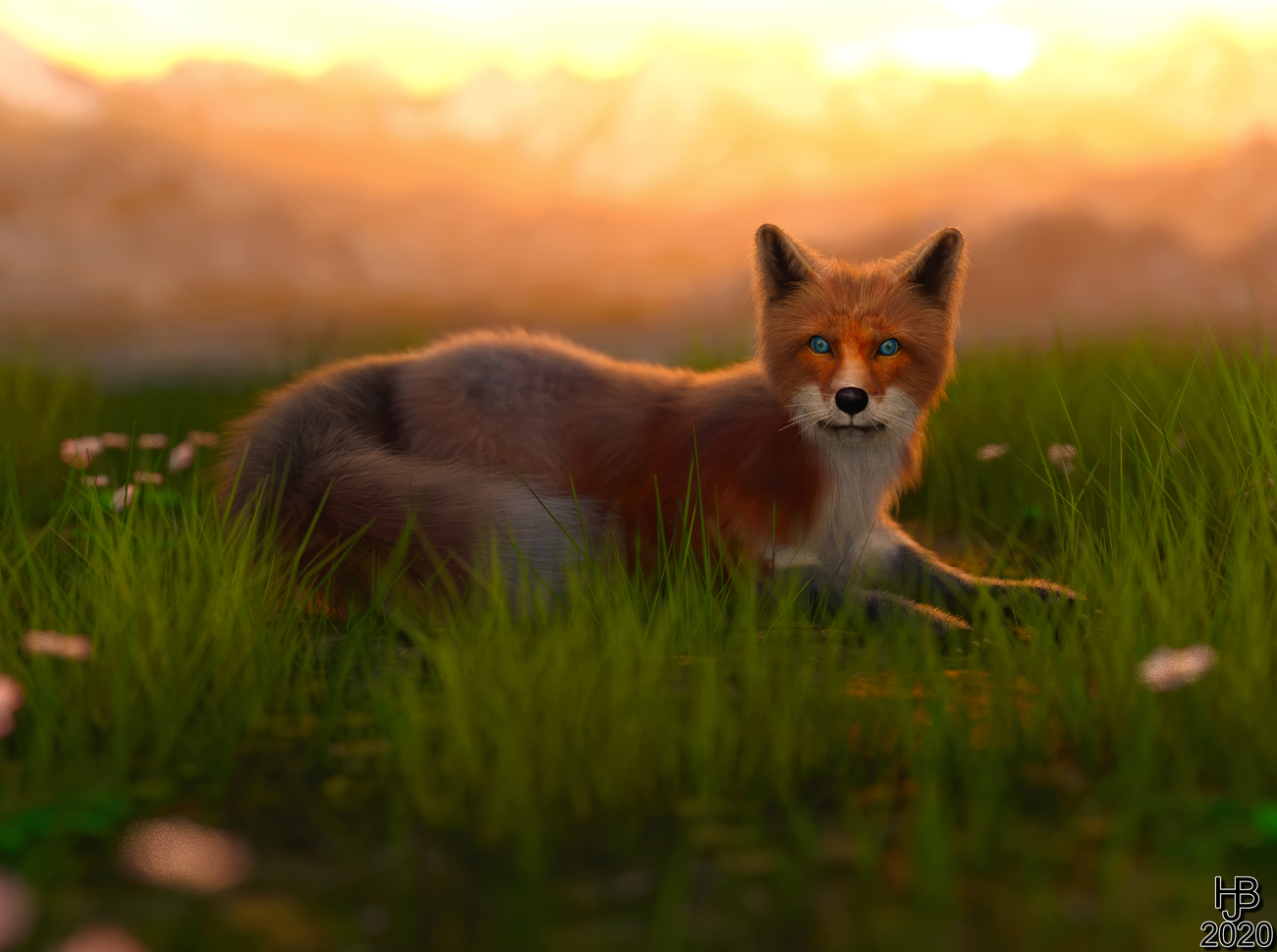 Fox in the grass by Hajoba
