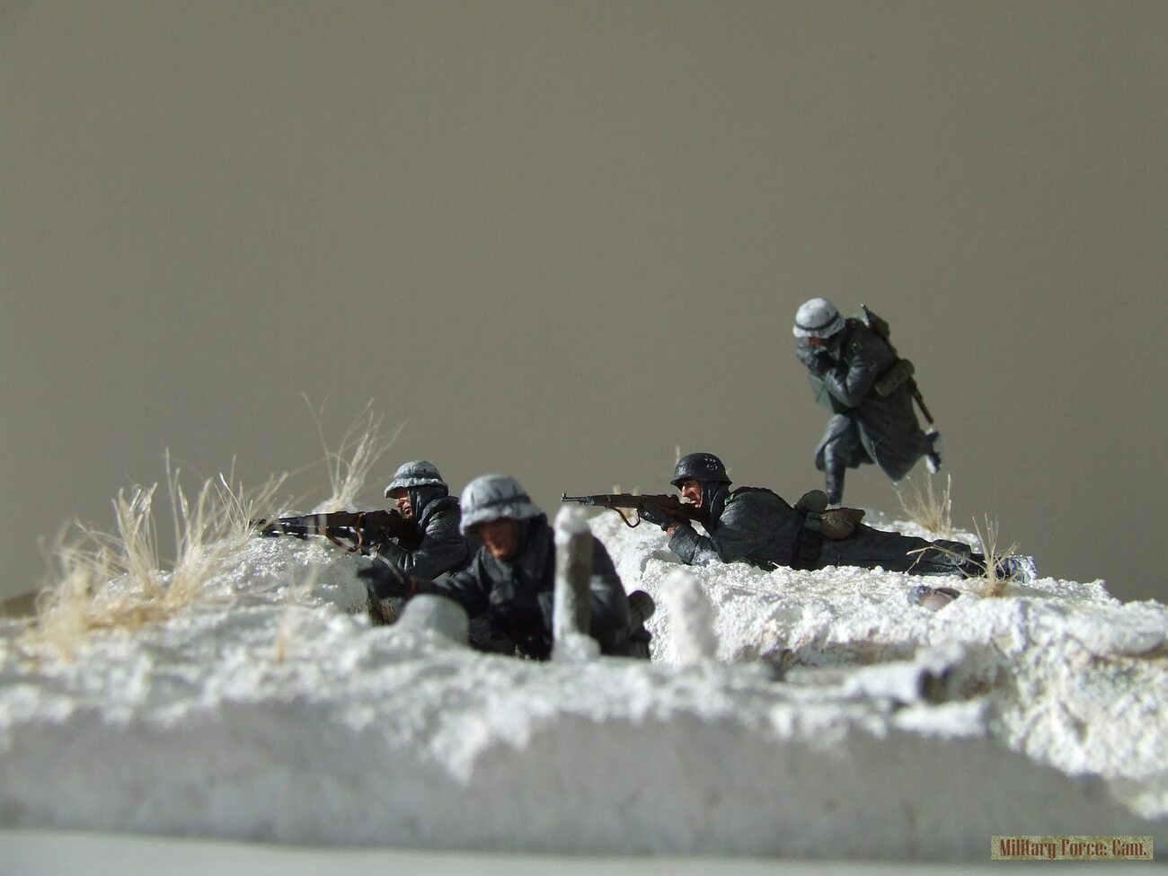 Eastern front.(4). by vechtdalcollege