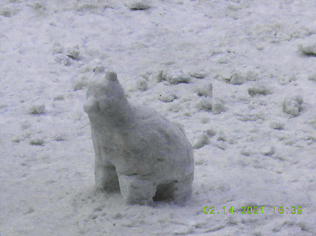 Snow Sculpture:  Dog by goldie