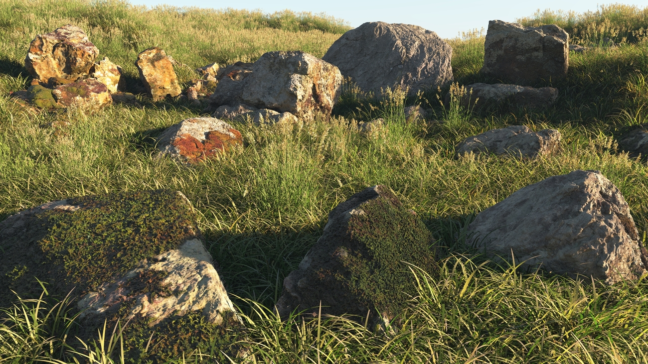 Granite rocks and grass by iborg64