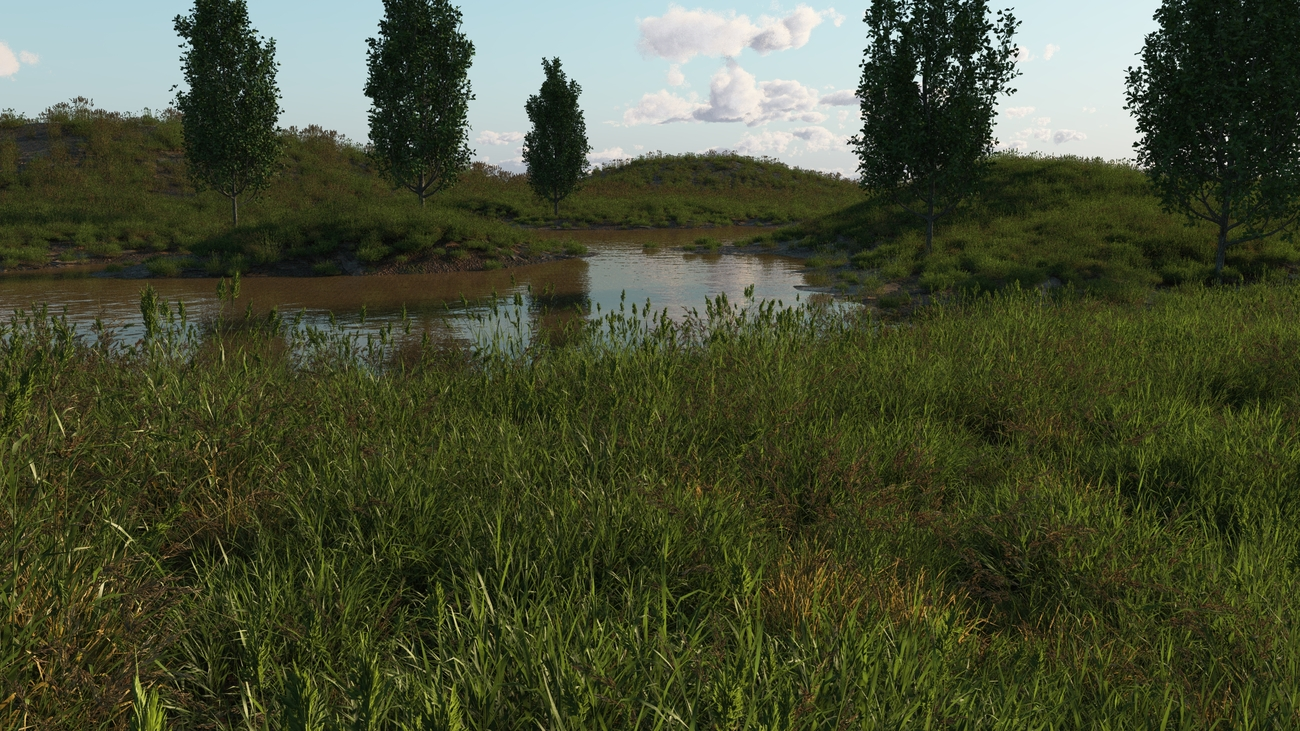 Small pond by iborg64